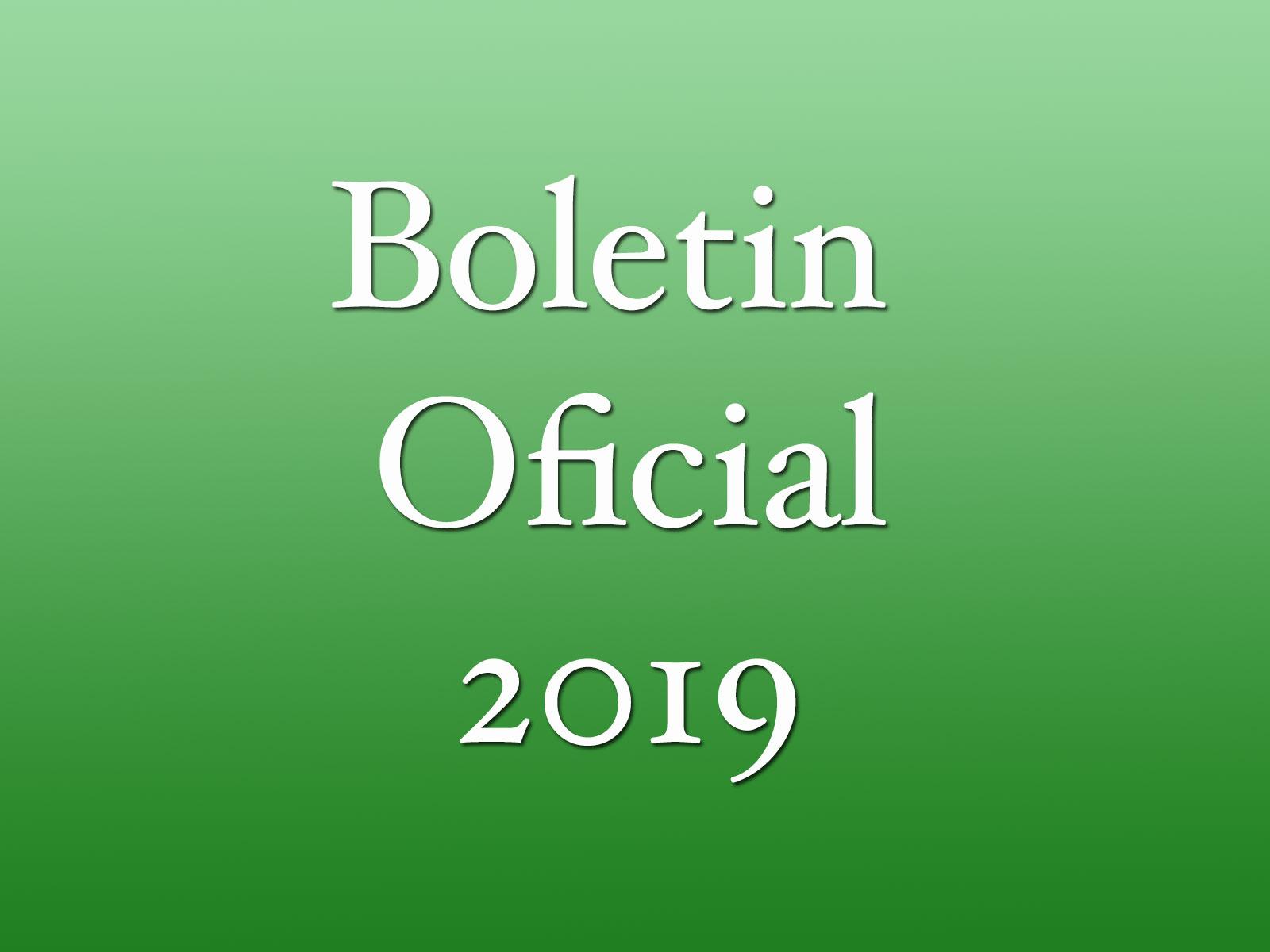 Boletín oficial 2019